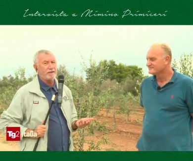 TG2 Italia intervista Mimino Primiceri